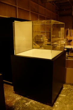 Museum Display Case