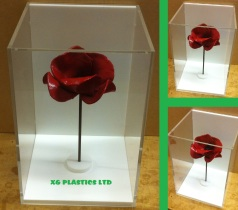 Tower of London Poppy Display Case